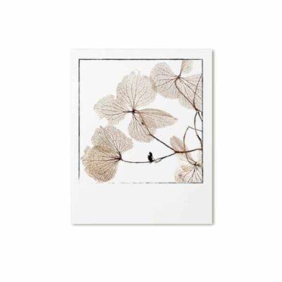 Zoedt Retrokaart Gedroogde bladeren