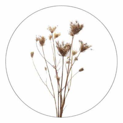 Zoedt Muurcirkel Gedroogde bloemen - 2 maten